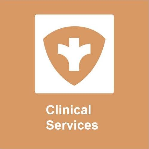 Clinical Services icon for website